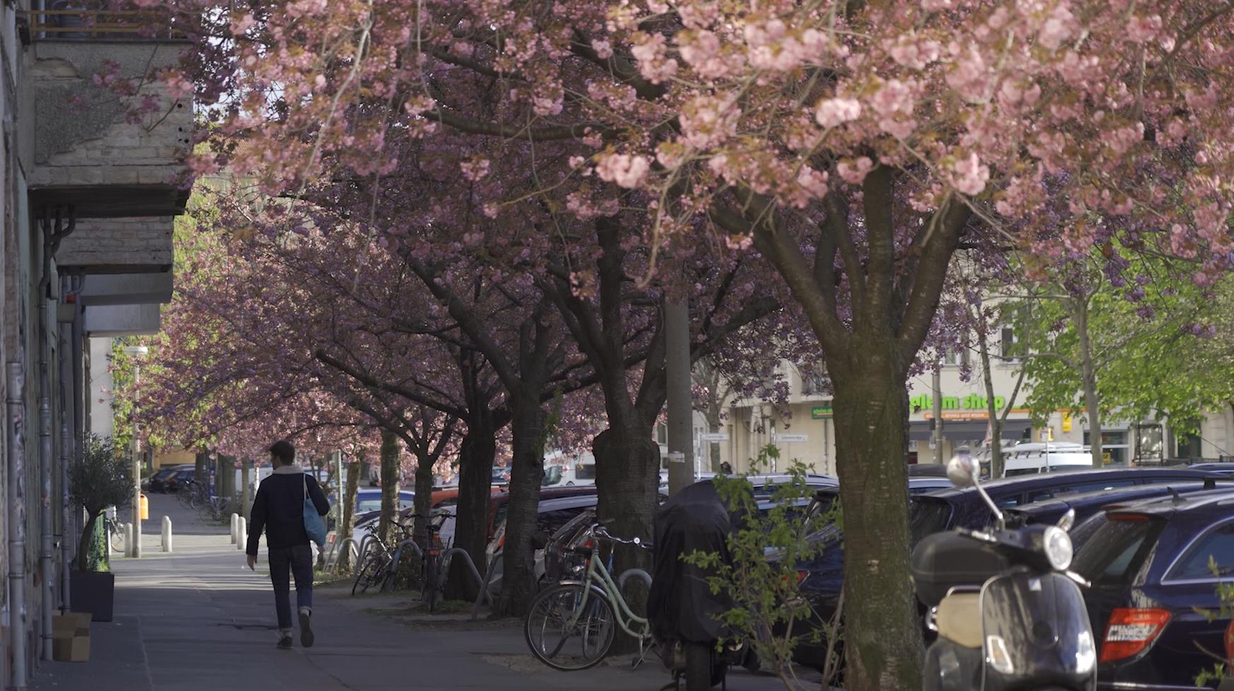 柏林的春天